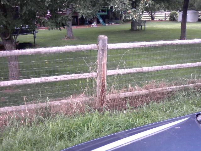 Wire Mesh on Split Rail  Fence